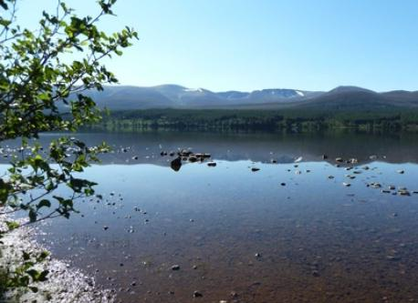 Loch Morlich in the Highlands, a 2 hour drive