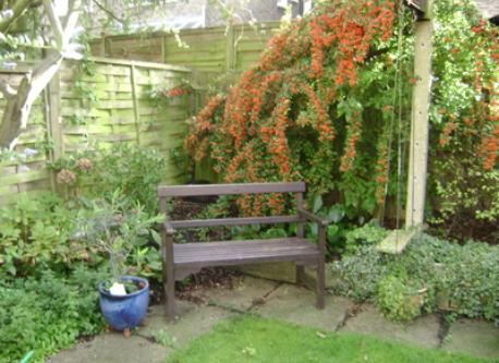 Sit out in the garden