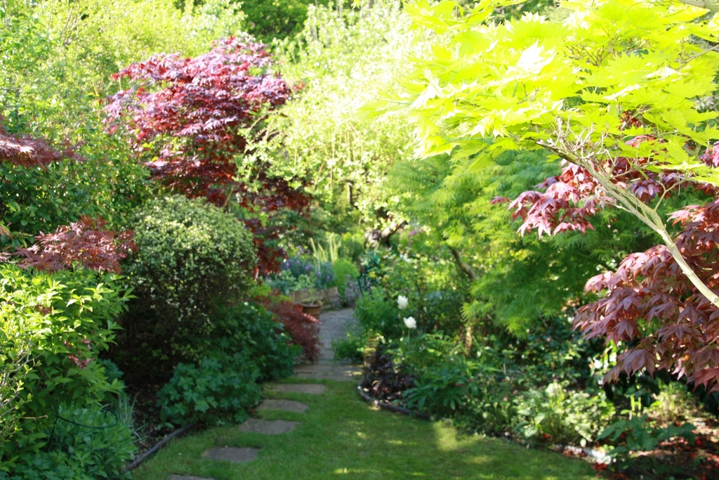 a small section of our lovely garden in the spring