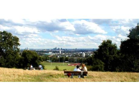 beautiful Hampstead Heath
