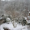 our snowbound garden in winter