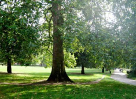 Kennington Park - just across the road