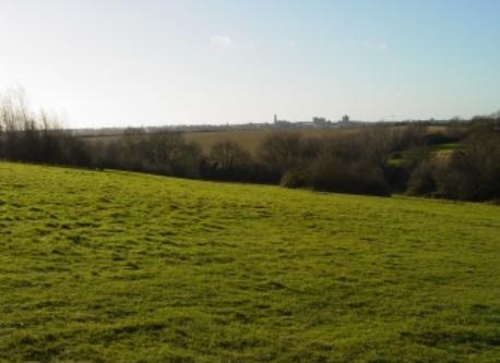 Colchester across the park