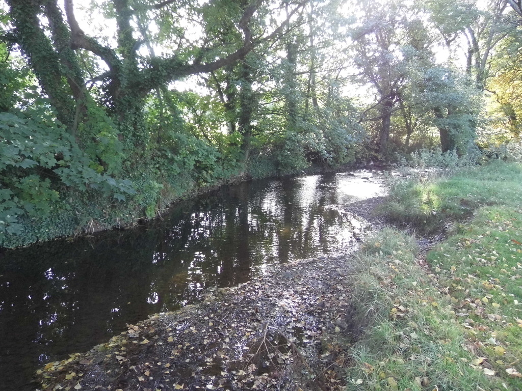 River Aville in Dunster.