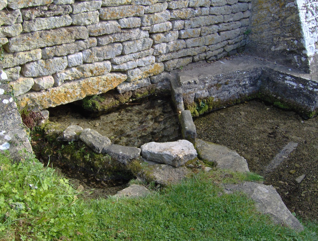 Ancient spring, the source of our stream.