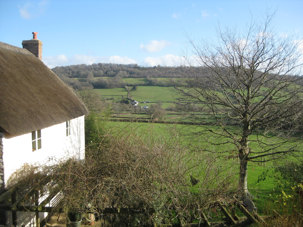 The thatched house next door and the view over the Blackdown hills.