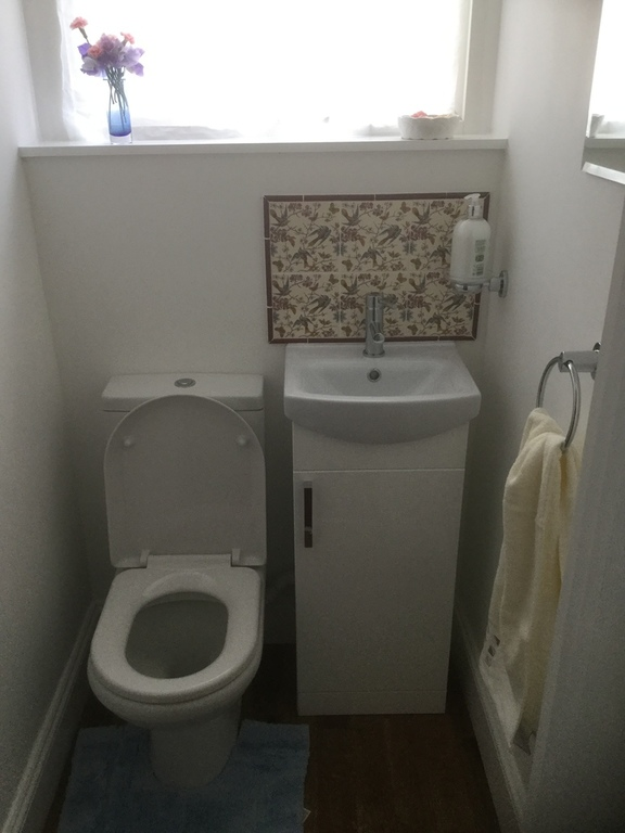 New downstairs loo