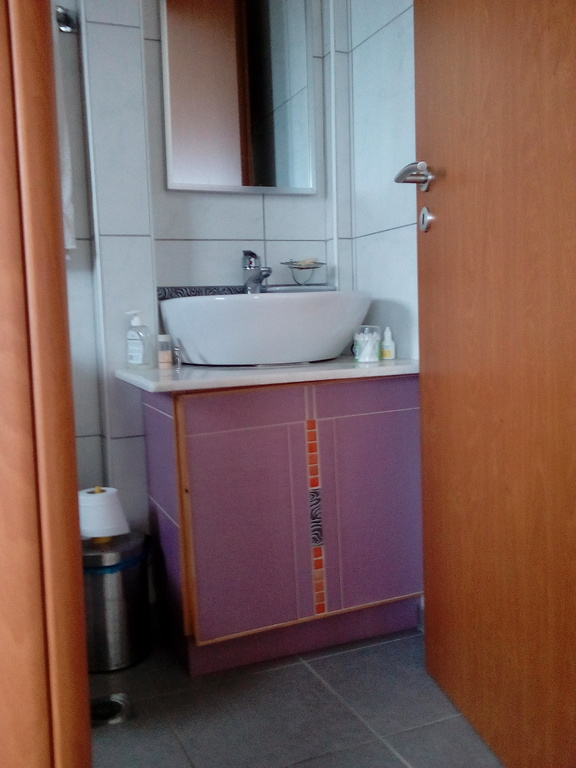 WC of 1st bedroom