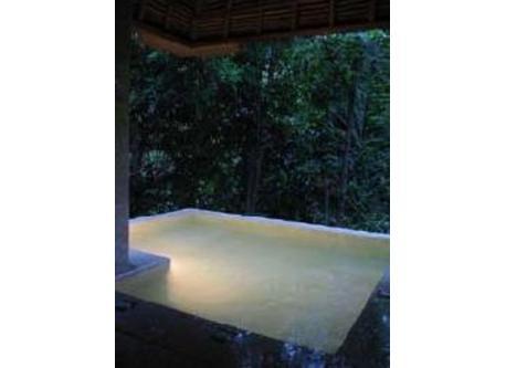 Jungle jaccuzi (cool water)