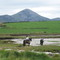 Horse riding & Croagh Patrick