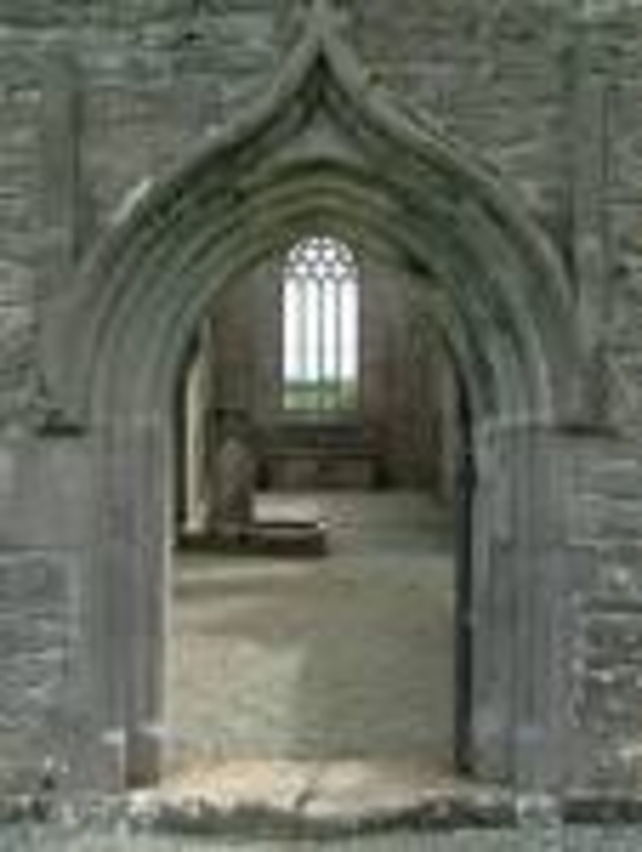 Rathfran abbey/ priory