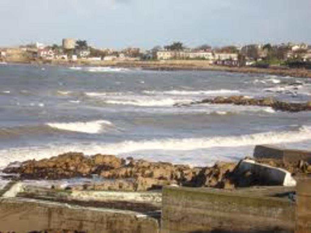 fancy a relaxing walk along the sea?