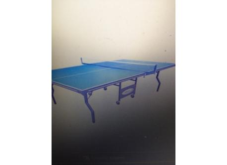 Full size table tennis table in garage-on wheels and can also be used outdoors!