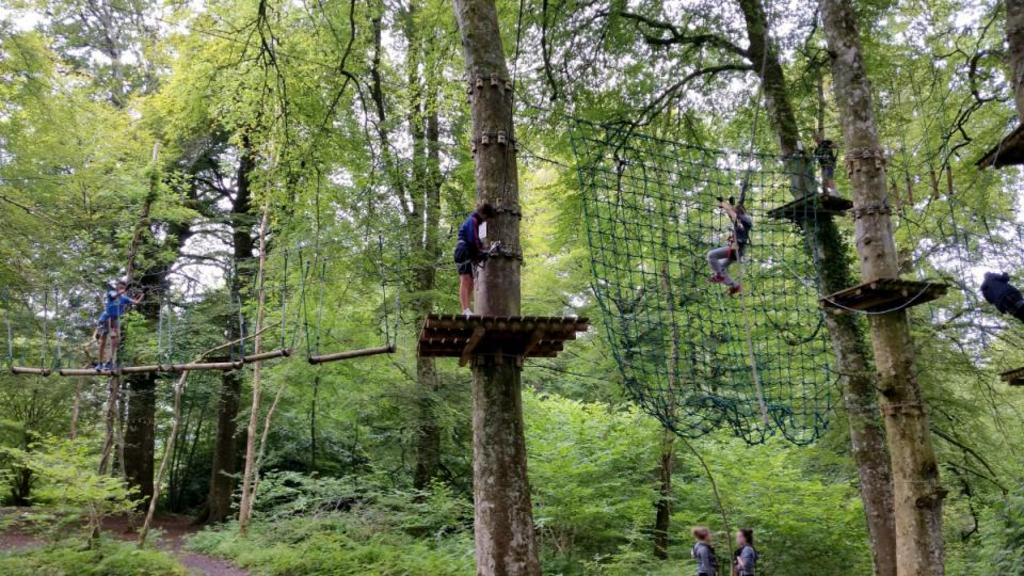 Zipwire and Forest Adventure 15mins drive