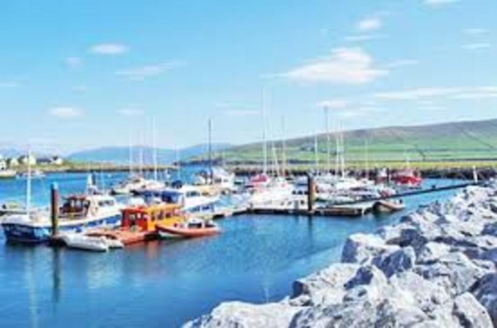 Dingle Harbour, with boat trips available to see Funghi and the Blasket Islands