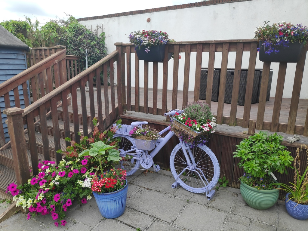 Flowers in front of decking