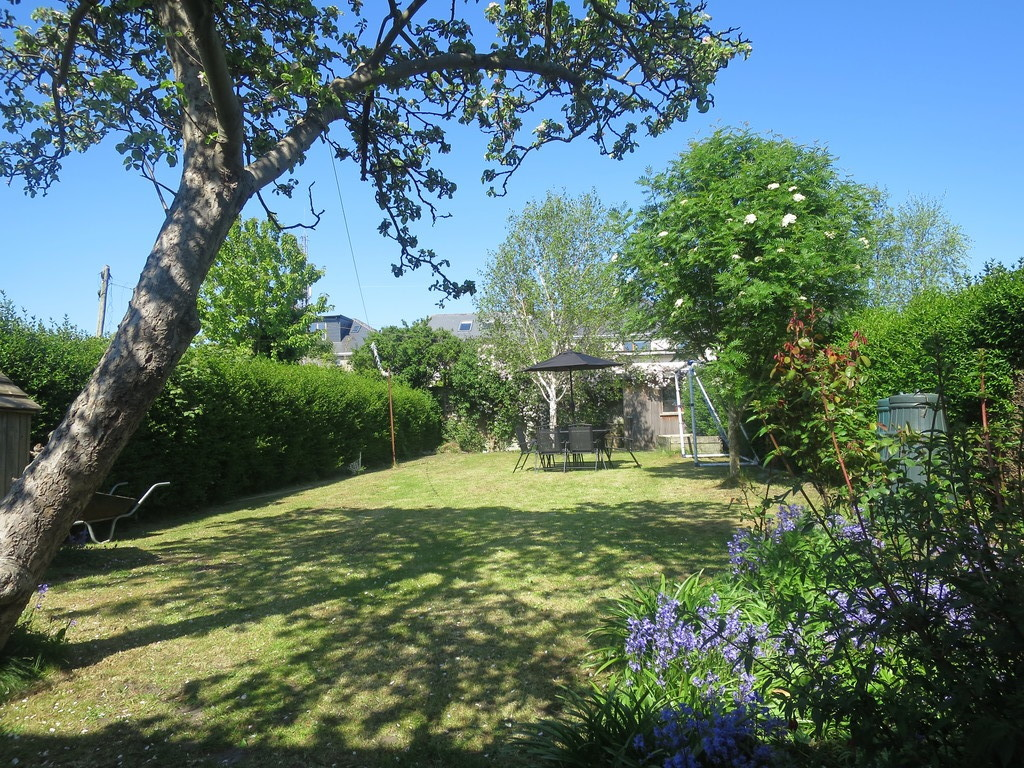 Private back garden in Spring