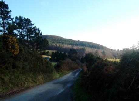 Dublin mountains, 12 km from our house