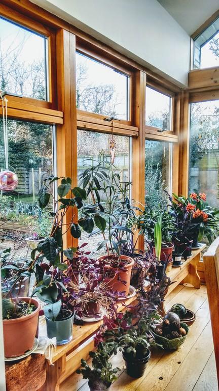 Diningroom/ wintergarden
