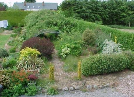 Garden at home in Kildare.