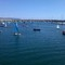 Learning to sail in Dun Laoghaire harbour