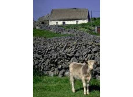 Gaelic Speaking Aran Islands Galway