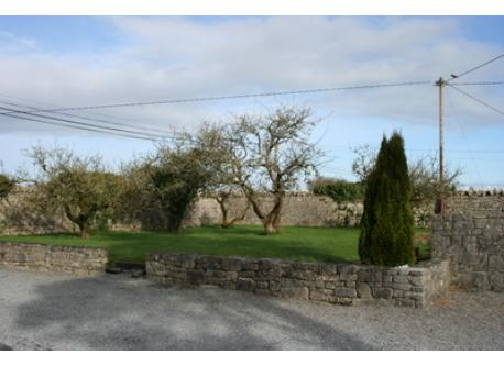 Our spacious walled and secluded back garden in the Irish countryside
