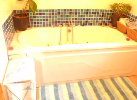 main bathroom with jacuzzi bath