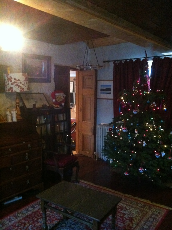 Christmas in Kinsealy!