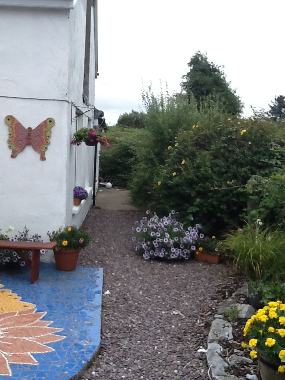 Mosaic patio at rear of house