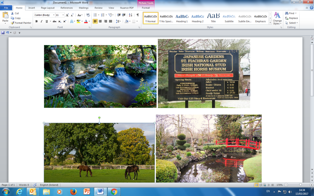Japanese Gardens & Irish National Stud. Kildare 40 km