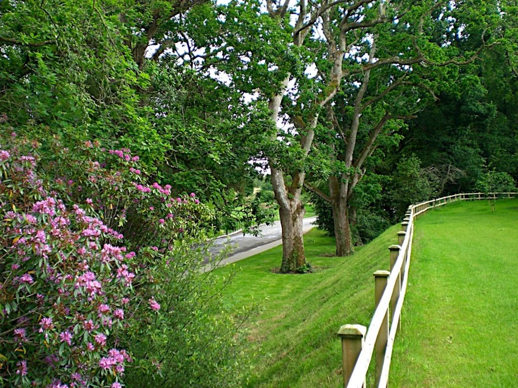 Common garden areas