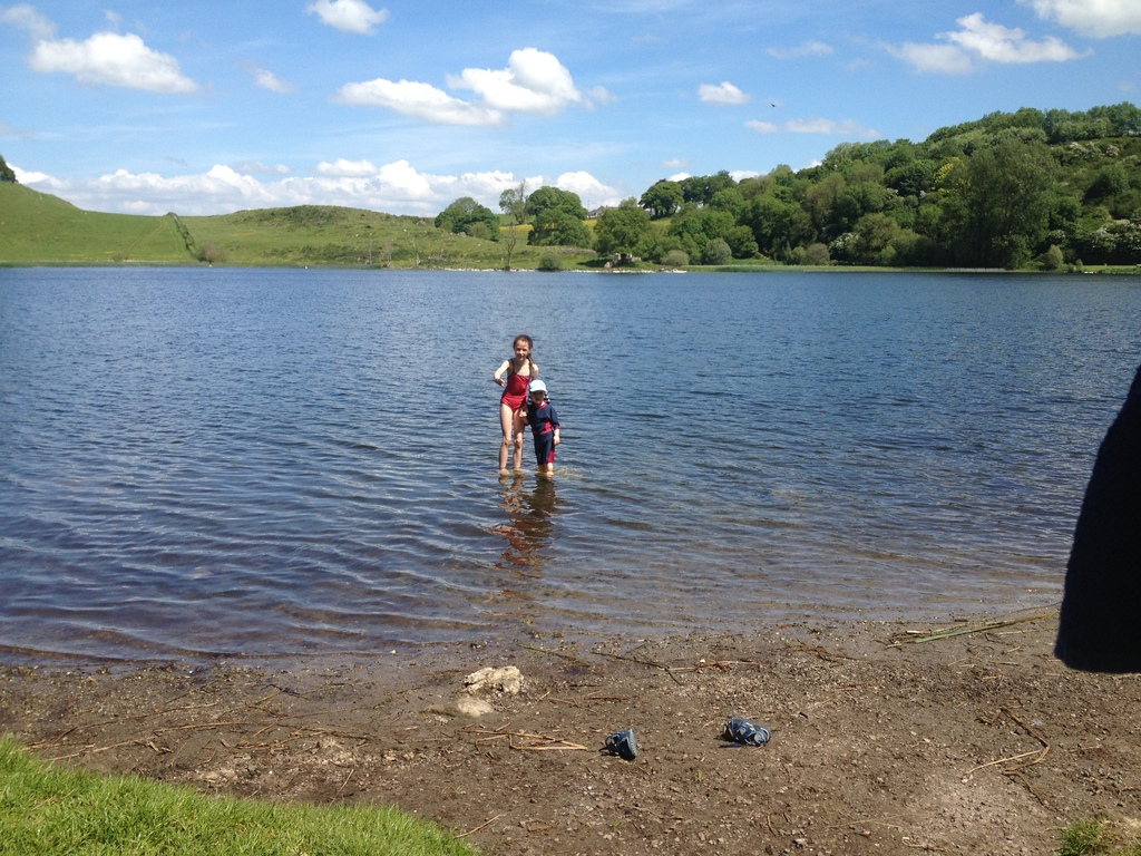 Enjoying a swim in Lough Gur