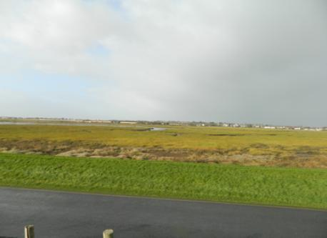 Portmarnock Wetlands / Bird Sanctuary