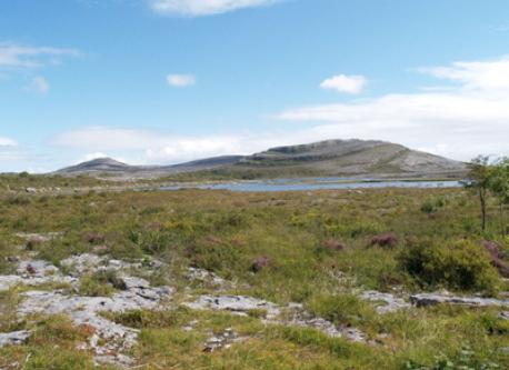 The Burren National Park is less than 40 minutes drive from Quin