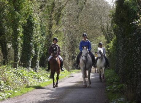 Horse riding in Quin