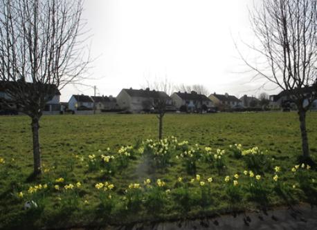 Maunsells Park