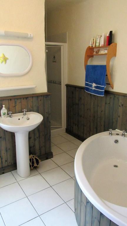 Ground floor bathroom, shower and toilet.
