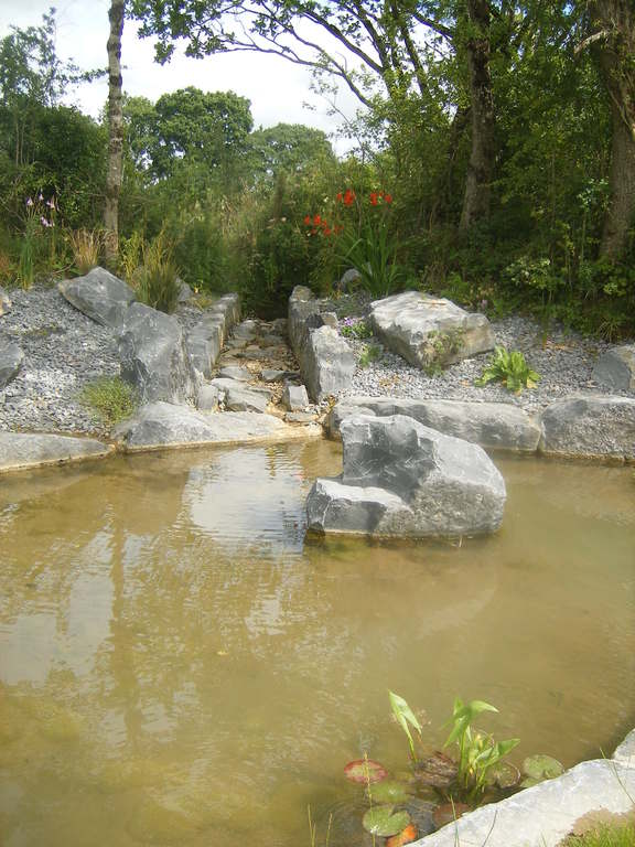 Pond /stream in garden
