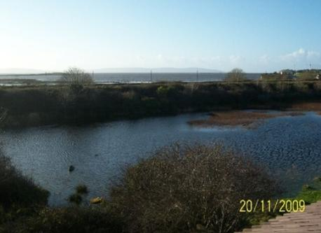 View from our attic, pond and the sea in the background