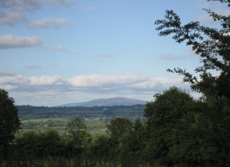 View from house