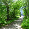 Entrance through Garden