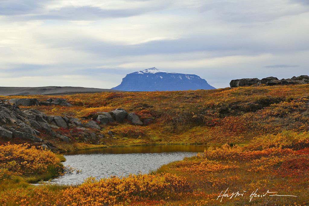 Mt. Herdubreid, most beautiful Icelandic mountain