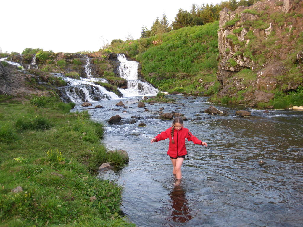 In Elliðaárdalur in walking distance (2,5 km) from our house. A salmon river.
