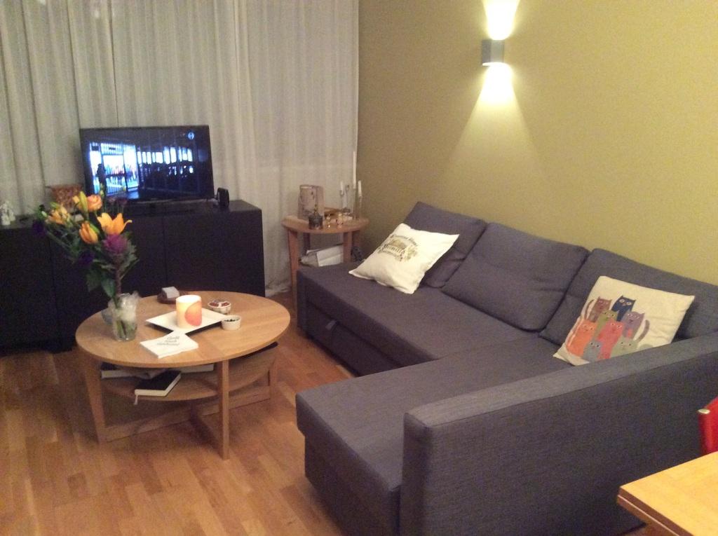 Lining room - sleeping sofa