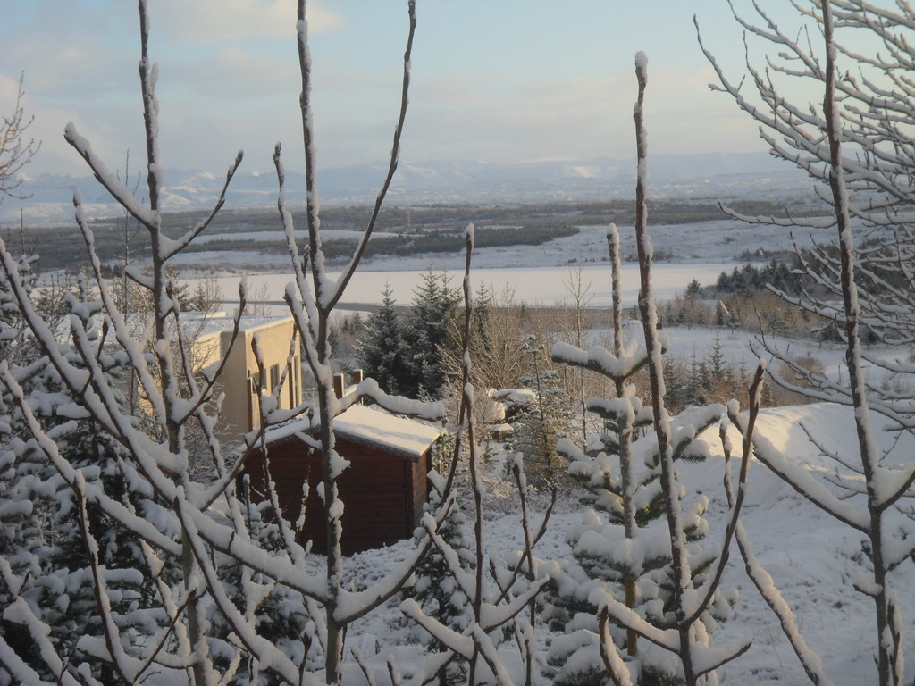 Winter view from our balcony