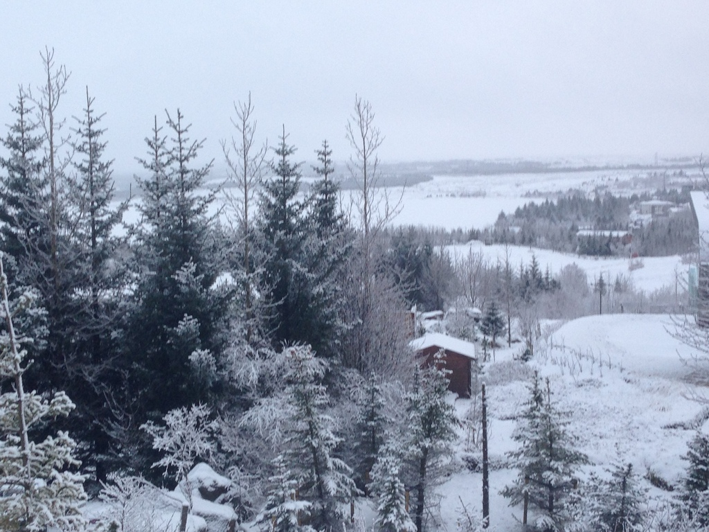 Winter wiew from our house