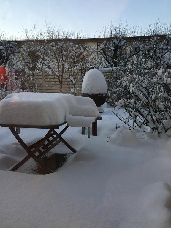 """Our """"winter wonderland"""" garden"""