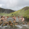 Natural hot pool in the country side