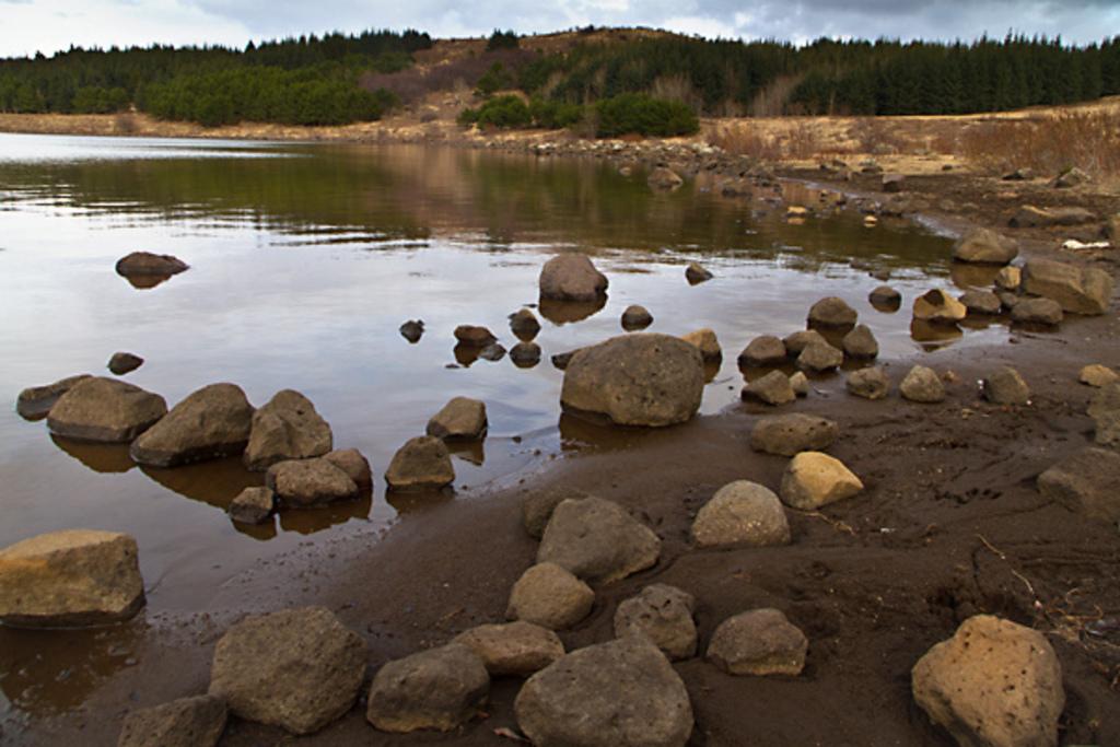 Hvaleyrarvatn is a small lake in Hafnarfjordur.
